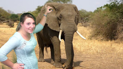 photo of girl superimposed with elephant