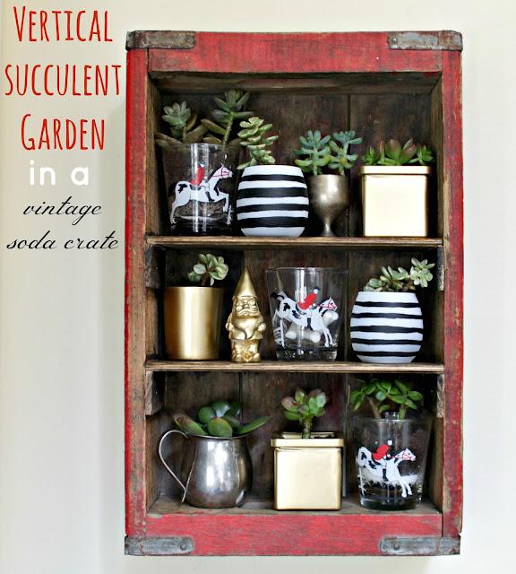 succulent garden in a soda crate