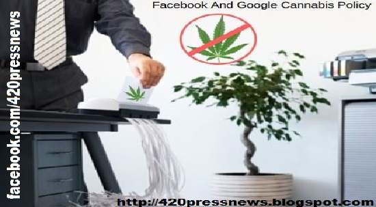 Facebook And Google Cannabis Policy Enforcement