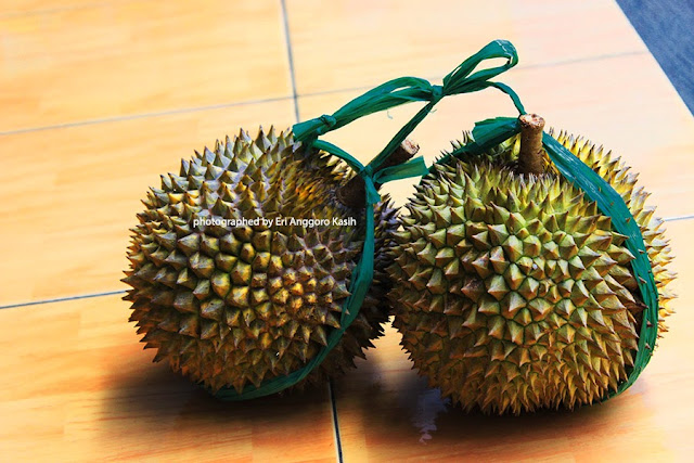 Durian normal tanpa gigitan tupai hehehe ....
