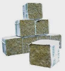 cubi-lana-roccia-germinazione-ebay