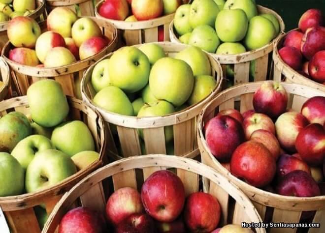 Epal antioksidan