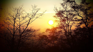 Noche y sol en una adivinanza ingeniosa.