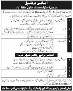 DPS Jobs in Hafizabad 2019