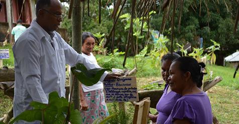 Medico ayuda a los pobladores del amazonas a volver a la medicina natural Por Raul Manisse de Ecocosas.com