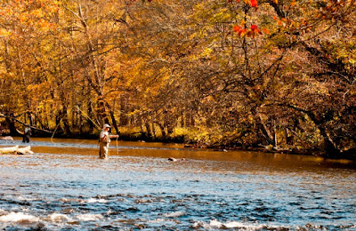 Fall in Blount County, Tennessee