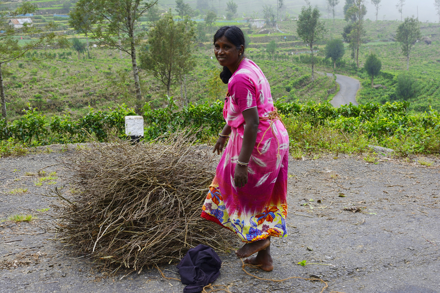 Tamilka podczas pracy