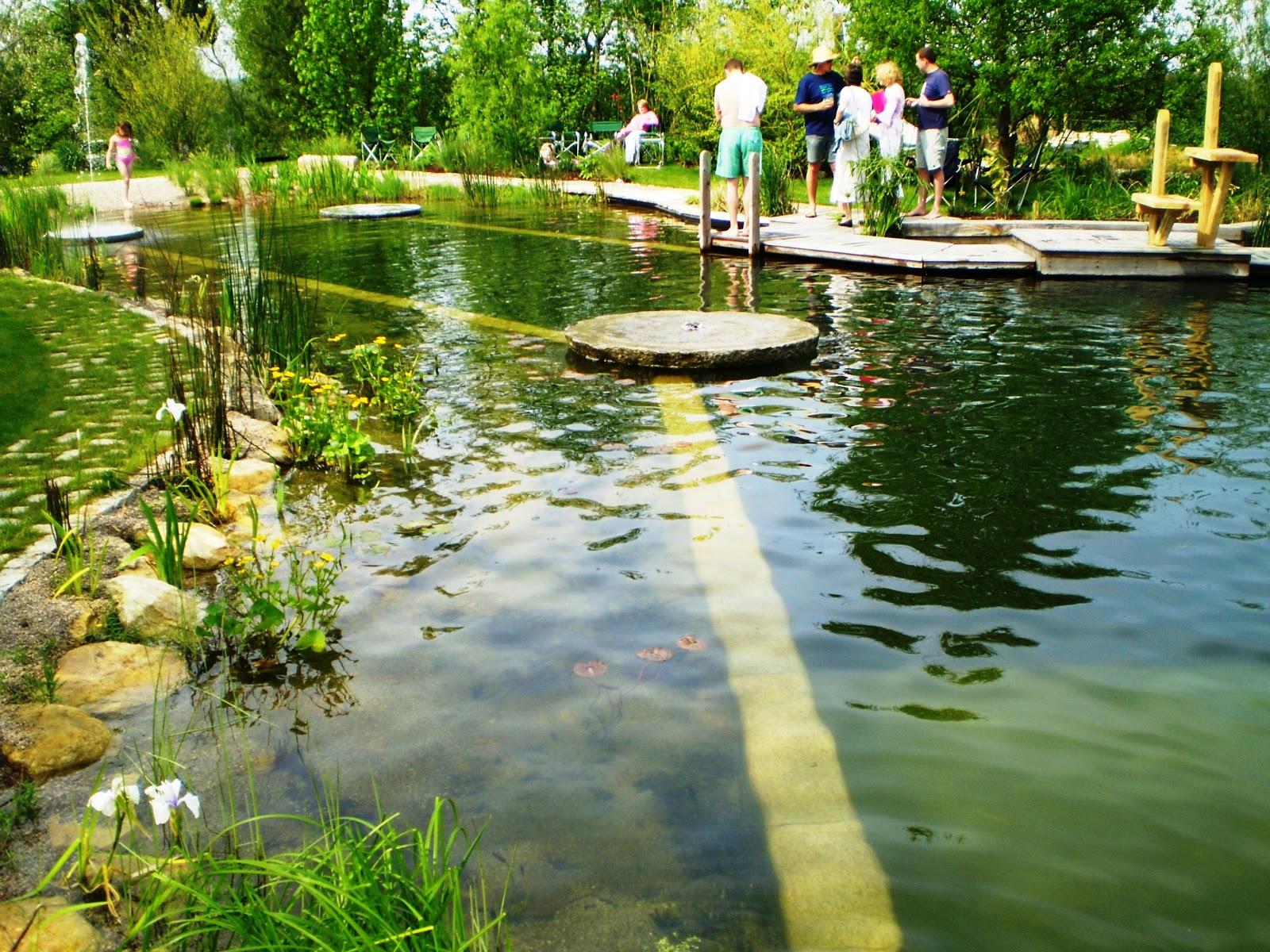 Fernando ruz piscinas naturales Piscina natural jardin