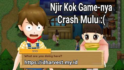 Cara Mengatasi Crash atau Eror HM: LoH