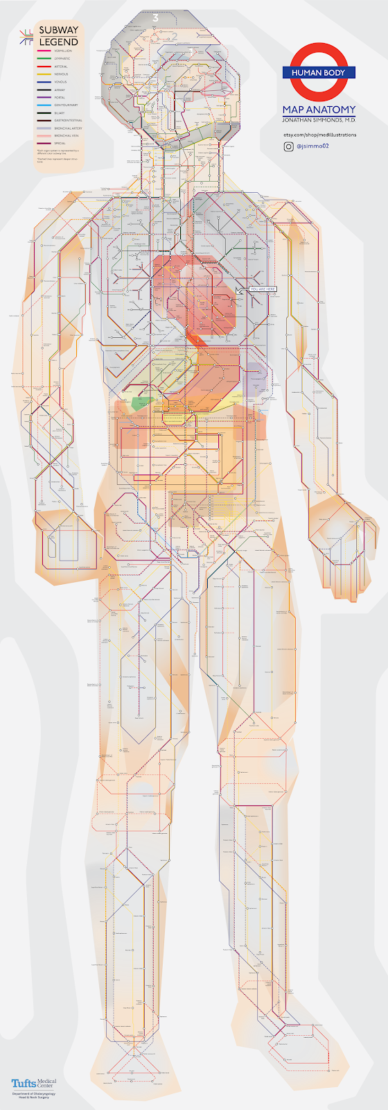 Map Anatomy in the style of a metro map