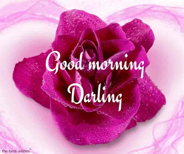 good morning darling photos hd