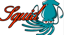 Squid Proxy List Server