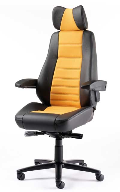 Ergonomic Office Chair Computers