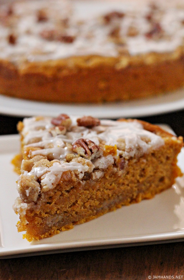 Moist and so flavorful, this Pumpkin Coffee Cake can be enjoyed year ...