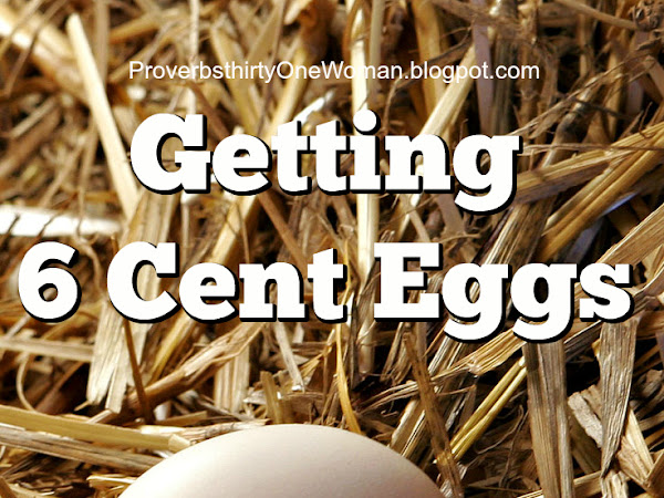 Getting .06 Cent Eggs (or Feeding Chickens on the Cheap)
