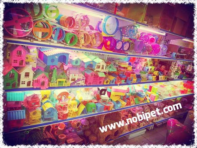 shop-hamster-nobipet-ban-chuot-canh-o-da-nang-5