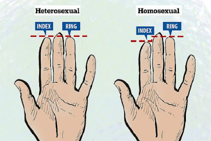 Perbedaan Panjang Jari Telunjuk dan Manis Ungkap Seksualitas Anda