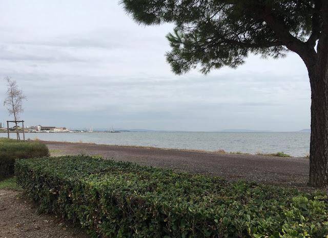 Photo étang à Marseillan
