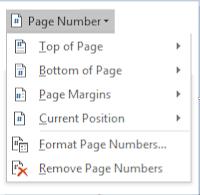 Memberi Penomoran Halaman Microsoft Word