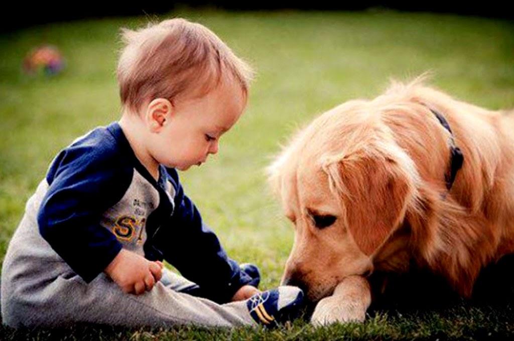 foto-bayi-imut-bermain-dengan-anjingnya