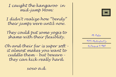 """I caught the kangaroo in mid jump mom:  I didn't realize how """"bendy"""" their jumps were until now.  They could put some yogis to shame with their flexibility.  Oh and their fur is super soft, it almost makes you want to cuddle them - but beware - they can kick really hard.  xoxo a.d."""