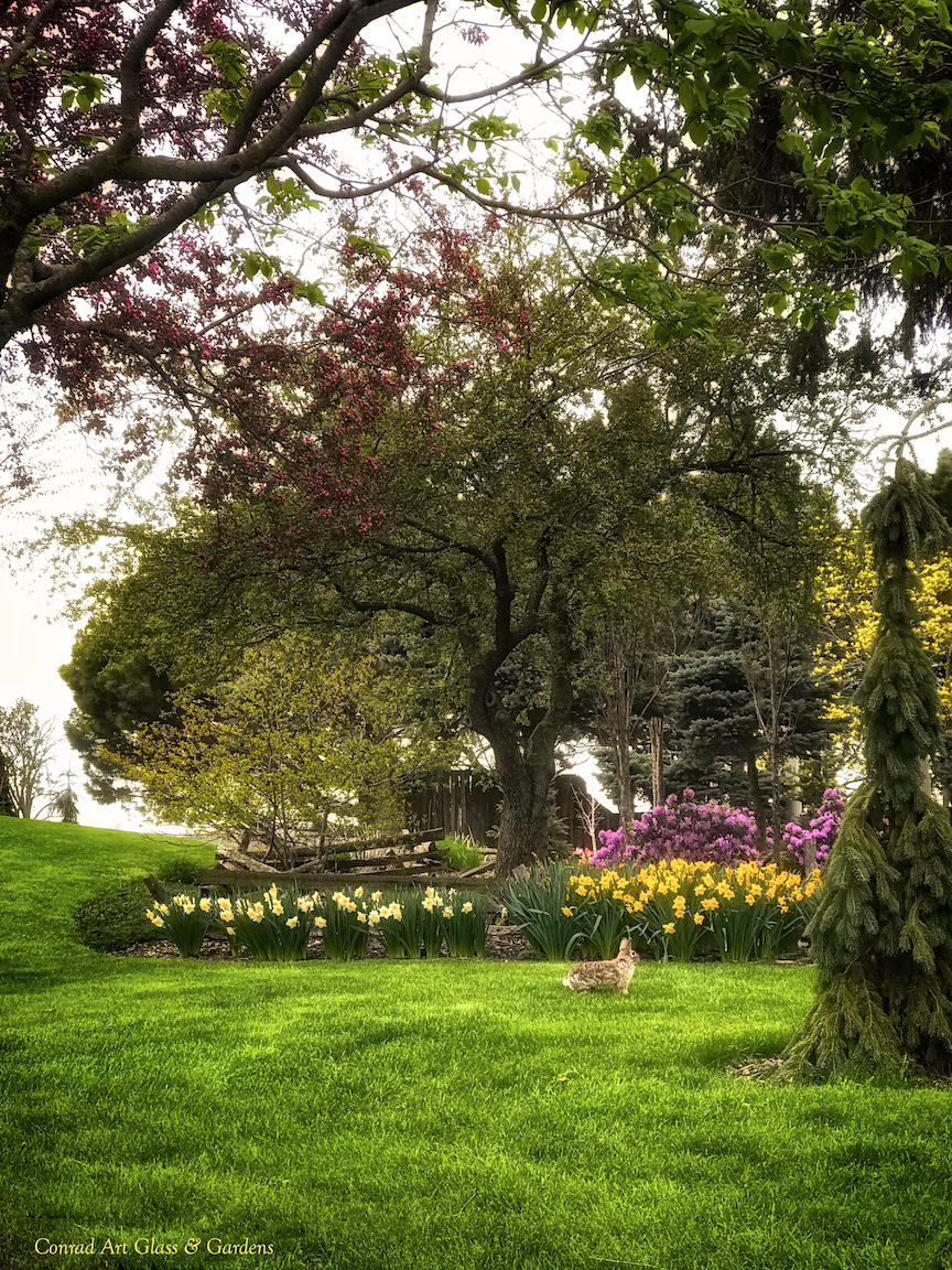 More of spring at Oak Lawn Cheese Factory... | Conrad Art Glass ...