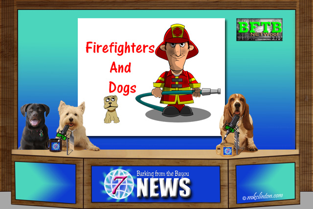 BFTB NETWoof Dog News with Fireman and dog