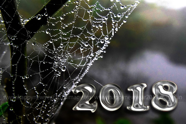 Happy New Year 2018 Shayari image
