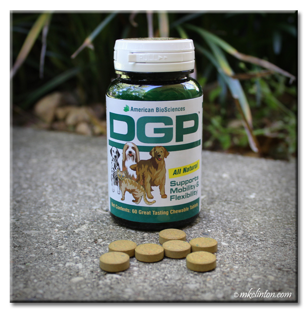 DGP All Natural Joint Supplement