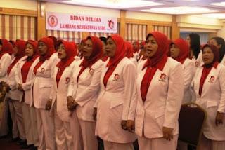 Perkembangan Bidan Di Indonesia