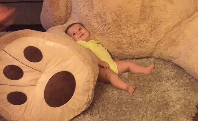 Abuelo compra un oso gigantesco a su nieta de cinco meses