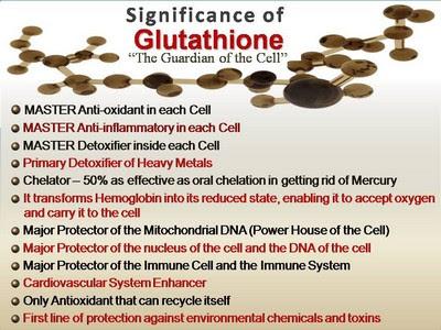 Main Antioxidant Glutathione