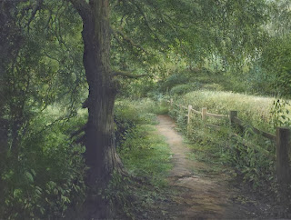 Лесные картины
