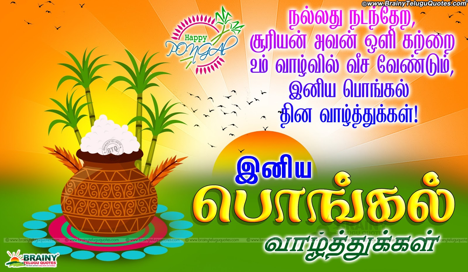Tamil ponkal festival greetings pongal tamil greetings with hd best tamil pongal greetings online quotes pongal valthukkal in tamil tamil pongal wishes quotes kristyandbryce Images