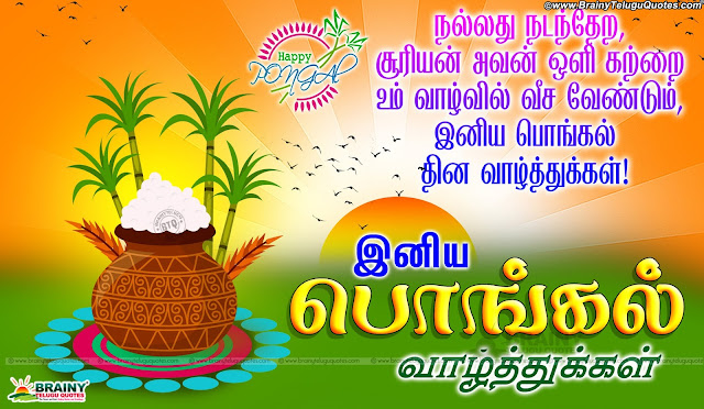 best tamil pongal greetings online quotes, pongal valthukkal in Tamil, Tamil Pongal wishes quotes