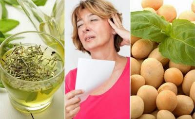 produits naturels pour contrôler la ménopause