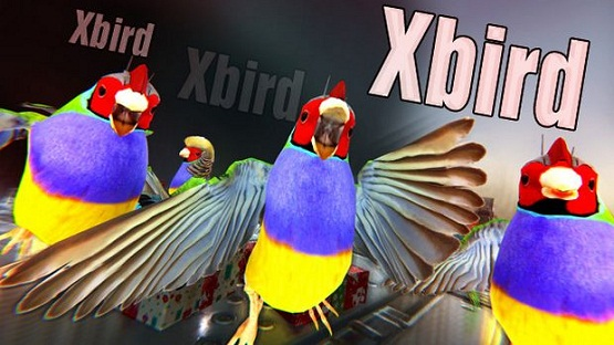 Xbird Game Download Free For Pc - PCGAMEFREETOP