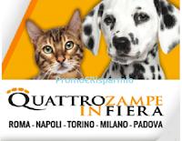 Logo Quattro Zampe in Fiera: scarica il tuo buono sconto