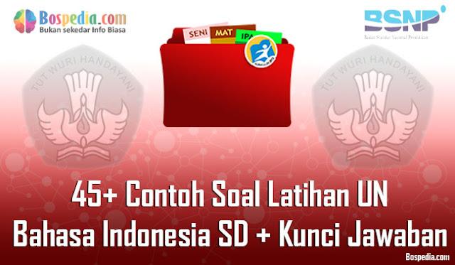 45+ Contoh Soal Latihan UN Bahasa Indonesia SD + Kunci Jawaban (Paket A)
