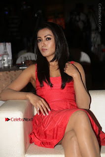 Actress Catherine Tresa Unveils Intex Air Conditioners  0074.jpg