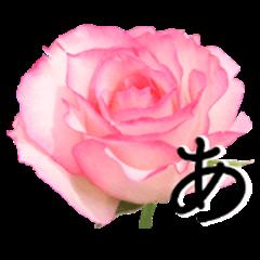 The flower Sticker Rose(Set2)