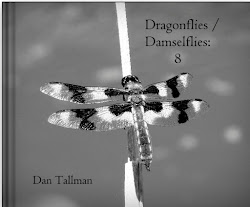 NEW  EDITION: Dragonfly eBook $9.99. Also other formats. Click cover image.