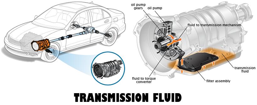 Low Transmission Fluid