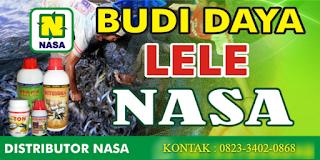 AGEN NASA DI Air Dikit Mukomuko - TELF 082334020868