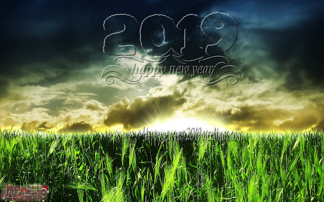 New Year 2019 Nature Desktop pictures Background