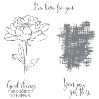 You've Got This - A fantastic versatile stamp set to add  to your collection - Simply Stamping with Narelle - available here - http://bit.ly/2x6hoMa