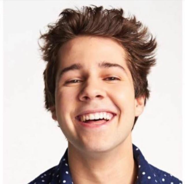 David Dobrik age, net worth, birthday, siblings, house address, girlfriend, where does he live, how old is, merch, liza koshy, vlogs, friends, subscriber count, vine, car, vines, movie, braces, heath, outro songs, with braces, camera, live subscriber count, fml, snapchat, instagram, youtube