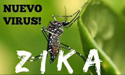 ¿Es el virus del  ZIKA un fraude?
