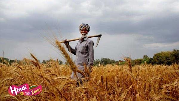 भारतीय किसान पर निबंध | Essay on Indian Farmers in Hindi
