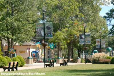 Cape May County Park and Zoo in New Jersey